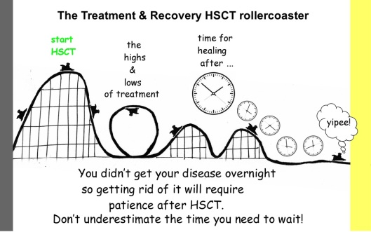 rollercoaster-hsct
